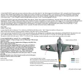 32057 FW 190 F-8 decal sheet 1:32