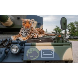 035038 Leopard-2A4HU in Hungarian service from 2020-  decal sheet 1:35