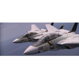 """32080 F-14A Jolly Rogers  """"A végső visszaszámlálás"""" sorozat no.1 dupla matrica 1:32"""