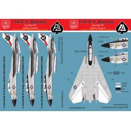 48217 F-14A Black Aces/ USS Nimitz matrica 1:48